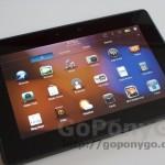 Fotografías JPG Blackberry Playbook (17)