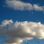 Fotografía tomada con el Nokia N8 (5)